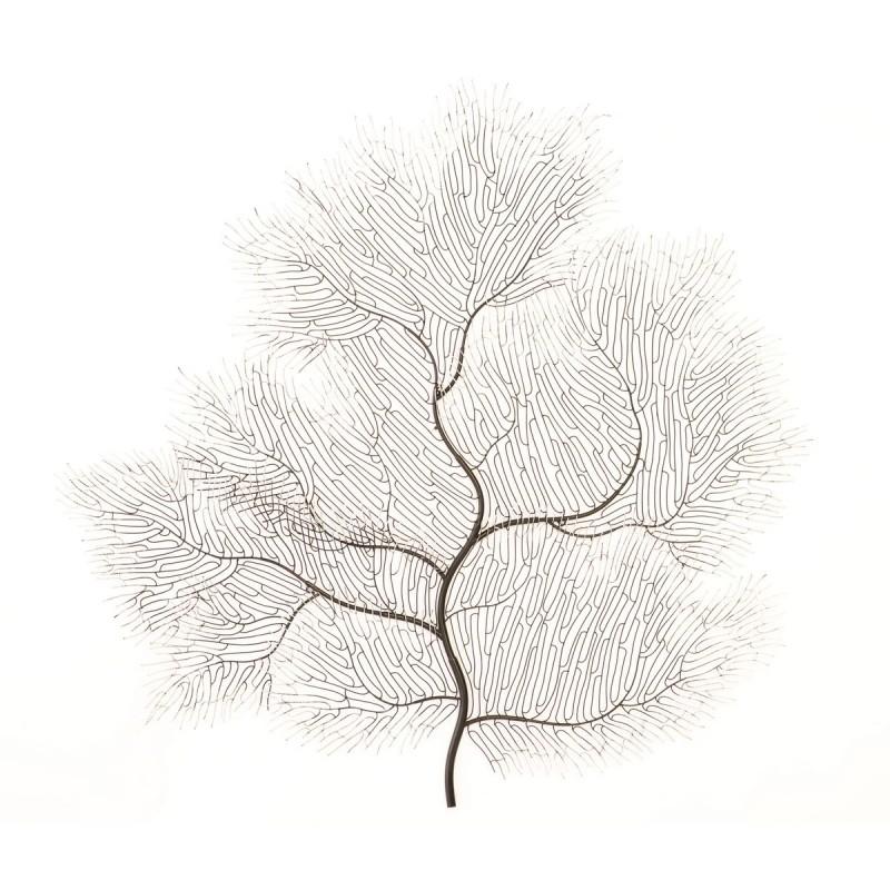 Настенный декор Coral Tree, Phillips Collection (Америка)